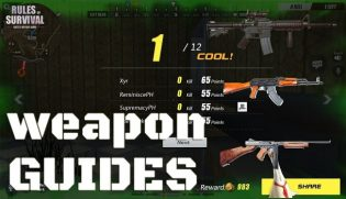 Rules of Survival Weapon