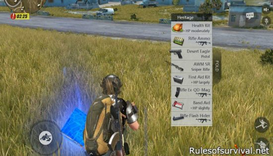 Rules of Survival Attachments