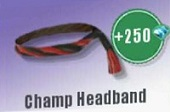 Champ Headband