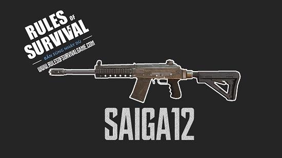 SAGAI12